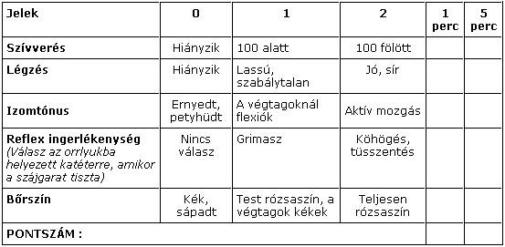 Hogyan számítják az Apgar értéket? Íme az Apgar pontrendszer.